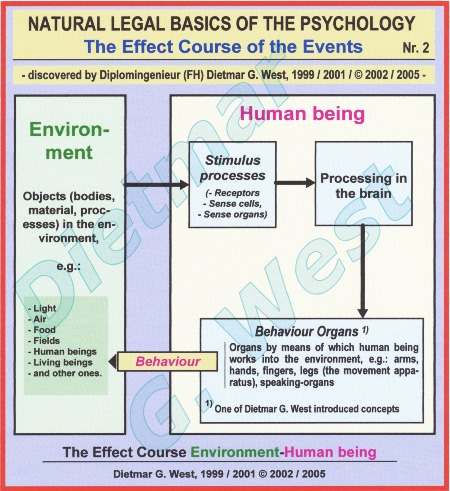 Natural-legal basics of the psychology: the effect course environment-human being (Representation 2).