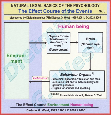 Natural-legal basics of the psychology: The effect course environment-human being --> Organs for the mediation of environment and Behaviour organs (Representation 3).